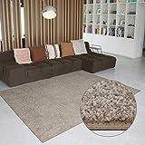 Carpet Studio Ohio Teppich Wohnzimmer 115x170cm, Weicher Kurzflor Teppich, Wohnzimmer, Esszimmer & Schlaffzimmer, Pflegeleicht, Geruchsneutral - Beig