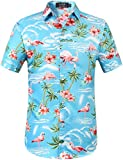 SSLR Herren Hemd Hawaiihemd 3D Gedruckt Flamingos Kurzarm Aloha Freizeit Hemd Button Down Shirt für Strand Reise (Medium, Blau)
