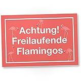 DankeDir! Achtung Freilaufende Flamingos rosa Kunststoff Schild mit Spruch Wanddeko Party Deko Dekoration Wohnung - süße Geschenkidee Geburtstagsgeschenk - Geschenk Beste Freundin