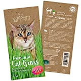 PRETTY KITTY Premium Katzengras Saatmischung: 1 Beutel mit 25g Katzengras Samen für 10 Töpfe fertiges Katzengras – Eine grüne Katzen Wiese – Natürliche Katzen Leckerlies – Pflanzen Samen - G