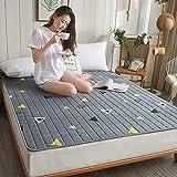 LXSHMF Schlafen Tatami Bodenmatratze,Atmungsaktiv Futon Klappmatratze Tatami Mat Weich Japanisch Für Studentenwohnheim Matratzen Pad-22 200x220cm