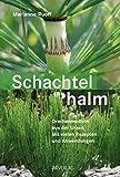 Schachtelhalm - eBook: Drachenmedizin aus der Urzeit. Mit vielen Rezepten und Anwendungen. Mit einem Vorwort von Wolf-Dieter Storl.