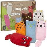 PRETTY KITTY 6X Minz Miezen - Räumungsverkauf (wenig Katzenminze): Katzenspielzeug Set aus Katzenkissen – 6X Katzen Kissen für Katzen - Spielzeug für Katzen