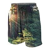 Herren Beiläufig Boardshorts,Sonnenlicht am frühen Morgen in den Mammutbäumen von Mariposa Grove, Yosemite National Park, Kal,Schnelltrocknend Badehose Strandkleidung Sportbekleidung mit Mesh-Futter