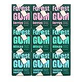 FOREST GUM im Probierset | Plastikfreies Kaugummi mit Minz-, Eukalyptus Menthol- und Beeren-Geschmack | Pflanzliche Zutaten | ohne Zucker | Vegan | je 3 x 20 g
