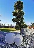 Trango 3er Set 253040WB IP65 Gartenkugel in Weiß matt mit 25/30/40cm Durchmesser *SNOW* Kugelleuchte inkl. je 1x 4-5 Watt E27 LED Leuchtmittel & je ca. 5 Meter IP44 Kabel, Gartenleuchte, Leuchtkug