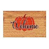 SOIUTAO Fußmatte Decke Freien Leicht zu reinigen Halloween Kürbis Dekoration Küche Personalisierte Verschleißfeste Bodenmatte kreatives Cartoon Muster Teppich außen rutschfest Saugfähig 40 * 60 cm