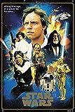 Close Up Star Wars Poster Hereos 40th Anniversary (61cm x 91,5cm) + Geschenkverpackung. Verschenkfertig!