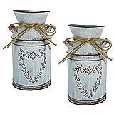 LATRAT 2 Stücke Vintage Blumenvase Herz Milchkanne Eisen Blumentopf Shabby Deko, Metall Eimer Übertopf Kaktus Topf, für Balkon Wohnzimmer Tischdeko