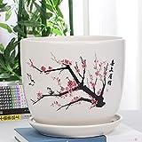 Kioiien Schöne Töpfe Bunte Vase einfache Wohnzimmerpflanzen Pflanzen potentopf dekorative indoor oder outdoor use ceramic blumentopf haushalt succulents innen hängende pflanzer korb für bonsai pflanze