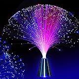LEDMOMO Glasfaserlampe mit Farbwechsel, batteriebetrieben, Glasfaser [Energieklasse A+] (nicht im Lieferumfang enthalten)