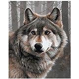 TAHEAT DIY Malen nach Zahlen Kit für Erwachsene Anfänger, Tiere Malen nach Zahlen auf Leinwand DIY Acrylmalerei 16x20 Zoll - Wolf ohne Rahmen