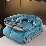 CHOU DAN Ganzjahres Steppbett 135x200cm,Premium Bettdecke 95 weiße Gänsedaunen 8 Catties Steppdecke Bettdeckenkern-Blau + Grau_220 x 240 cm 2000 g