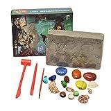 STOBOK Auskündigungs-Set für Edelsteine, Entdeckung, tolles Geschenk für Kinder, Party, Archäologie, Paläontologie, Bildungsw