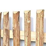 BooGardi Zaunlatten aus Haselnuss • Zaunbretter 5cm x 200cm zum Selbstbauen von Holzzaun, Lattenzaun, Staketenzaun BZW. Kastanienzaun