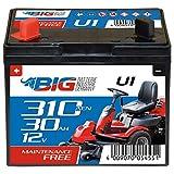 BIG U1 Garden Power Rasentraktor-Batterie 12V 30Ah 310A Starterbatterie für Aufsitzmäher wartungsfrei