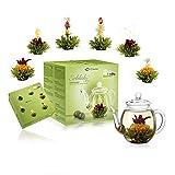 Creano Teeblumen Mix - Geschenkset Erblühtee mit Glaskanne Grüner Tee fruchtig aromatisiert (Teerosen in 6 Sorten), Blooming Tea, Tee Geschenk Ostern