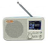 Ansodo Tragbares DAB-Radio, wiederaufladbar, FM-Bluetooth-Radio, Digital-Radio, multifunktional, FM-Radio mit Bluetooth-Audio-Player, TFT-Display, Internet-Radio (weiß + blau)