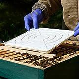 apisfarm FAM-Dispenser gegen Varroa