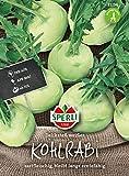 81134 Sperli Premium Kohlrabi Samen Delikateß Weißer | Aromatisch Zart | Langes Erntefenster | Kohlrabi Saatg