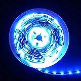 24V LED Streifen Blau,5m LED Stripes SMD5050(300 LEDs) Innen Deko Lichter, Nicht Wasserdicht IP20
