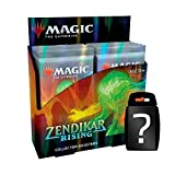 yvolve Magic The Gathering - Zendikar Rising - Collectors Booster   Display   ENGLISCH   Set inkl. Kartenspiel