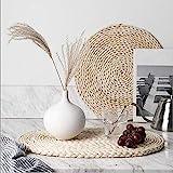 YANGQIHOME Gewebte Platzsets aus Maisschalen, natürliche, runde geflochtene Tischsets, gewebte Tischsets für Abendessen/Couchtisch, 35,1 cm, 6 Stück