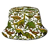 AOOEDM Dinosaurier Green Grass Zoo Unisex Druck Eimer Hut Muster Fischer Hüte Sommer Wende Packbare Kappe Frauen Männer Mädchen Junge