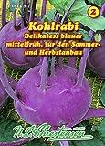 Kohlrabi, Delikatess blauer mittel N.L.Chrestensen Samen 418233-B