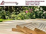 10€/lfm Terrassendiele sibirische Lärche Massivholz Gartenholz Terrassenholz Naturholzdielen Massivdiele (fein, 200)