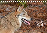 Begegnungen DER WOLF (Tischkalender 2022 DIN A5 quer)