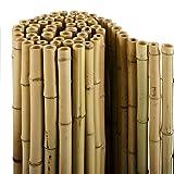 casa pura® Bambus Sichtschutz | Bambusmatte in Premiumqualität, Massive Bambusrohre | naturbelassen | DREI Größen (150x250cm, HxB)