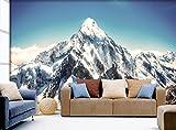 """3D-Wandtattoo, Motiv: Schneebirge, 222, selbstklebend, groß, Weiß, Vinyl (kein Kleber und entfernbar), weiß, 【123""""x87""""】312x219cm(WxH)"""