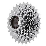 Qqmora Fahrradschwungrad hinten Freirad Ersatz Zubehör Mountainbike Ausrüstung(8 Speed-Chrome Plated)