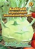 Kohlrabi, Superschmelz, Riesenkohlrabi spät N.L.Chrestensen Samen 418209-B