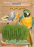 Vogelgras Saat