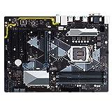 WERTYU Desktop-Motherboard für ASUS Prime B360-PLUS B360 LGA 1151 DDR4 ATX Motherboard Master Series PC Mainboard