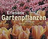 Erlesene Gartenpflanzen: Von Allium bis Zaubernuss - die Highlights für jeden Standort