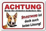 AdriLeo Schild - Vorsicht Bullterrier - Selbstmord - (30x40cm) / Hellbraun/weiß - Achtung Hund Wachhund