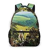 USGYY Rucksack Männer Damen Exmoor Hills Schaf Lamm, Laptop Rucksäcke, Kinderrucksack Schulrucksack Daypack für Jungen Mädchen