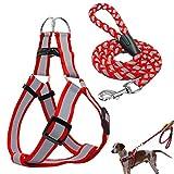 shuxuanltd Hundegeschirr Hundegeschirr Kleine Hunde Hundegeschirr führen Hundeleine für kleine Hunde Hundegeschirr für mittlere Hunde Hundetraining Lead red,Medium