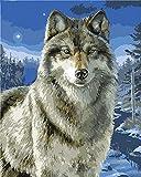 CaptainCrafts New Malen nach Zahlen 16x20 für Erwachsene, K0inder Leinwand - Snow Wolf, Wolf Tiere (Frameless)