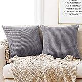 Deconovo Kissenbezug Dekokissen Kissenhülle Dekorative Zierkissenhülle Super Weich Kissenbezüge Decor für Sofa Couch Wohnzimmer Hellgrau 50x50 cm 2er Set