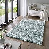 Taracarpet Shaggy Teppich Wohnzimmer Venezia Hochflor Langflor Teppiche modern Türkis 060x090