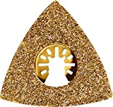 Worx Karbid Raspelplatte, 1 Stück, WA4966