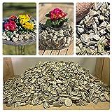 /N Dekosteine Granit - Gneis Woodstone - 6Kg (Feine Körnung)