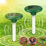 XHTANG 2 Stück Solar Maulwurfabwehr,Ultrasonic Solar Maulwurfschreck mit IP56 Wasserdicht,Wühlmausschreck,Mole Repellent, Schädlingsbekämpfung für Den Garten