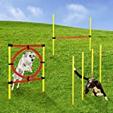 Momex Agility Set Hunde Training Hundesport mit Hürden und S
