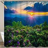 KGSPK Duschvorhang,Blue Ridge Parkway Craggy Pinnacle Rhododendron,Wasserfeste Bad Vorhang aus Polyestergewebe mit 12 Haken Duschvorhang 180x180cm