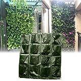 terynbat Wandhängende Pflanztasche Vertikal grün Pflanzgefäß mit 16 Taschen, Pflanzwand mit Balkon und Terrasse Wandbehang Blumensack Wandbehang grün Wand Balkon Garten komfortab